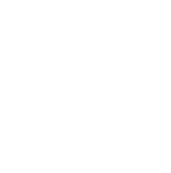 Balmyfox logo white